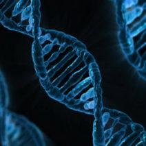 Centrul de Cercetare Anti-Aging sprijină medicina viitorului